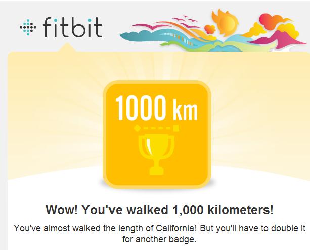 fitbit 1000 km