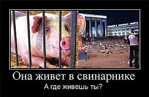 Россия свинарник или храм