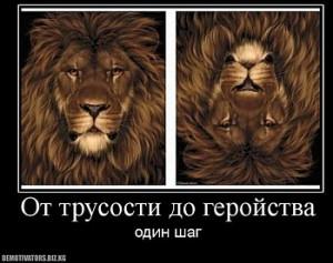 Я не смелый, однако я и не трус