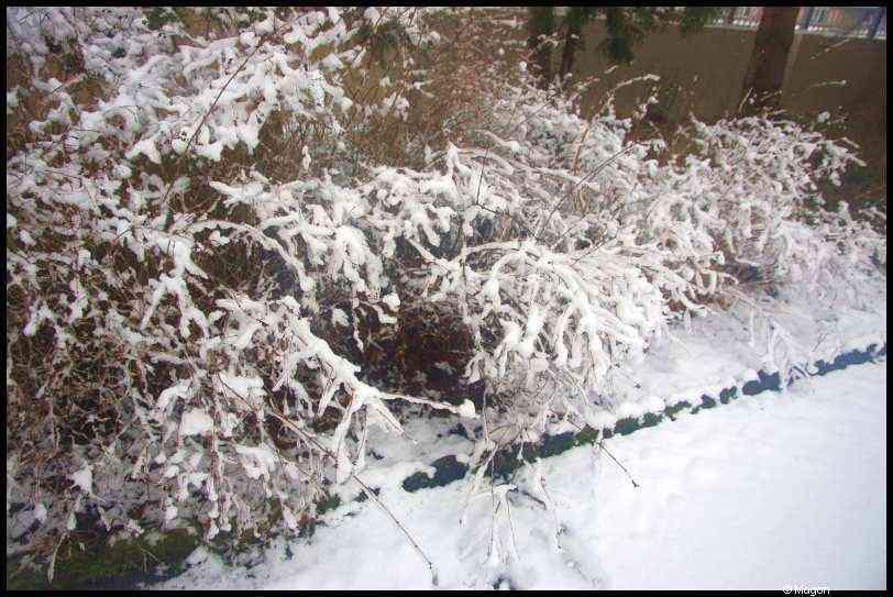 Winter in Luxemburg