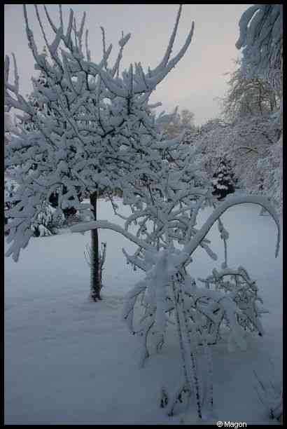 Snow in Luxembourg by Magon