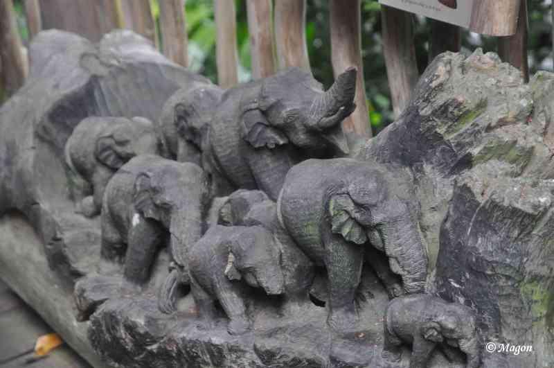 Слоны сингапурского зоопарка by Magon