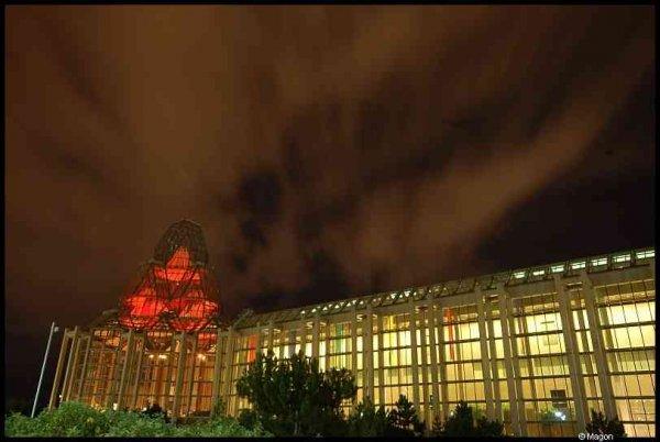 Ottawa at night by Magon