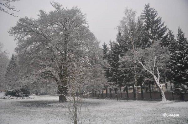 Зима в Люксембурге 2012 by Magon