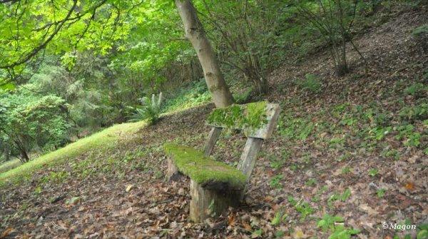 Деревянная лавка во Вьяндане (Люксембург) by Magon